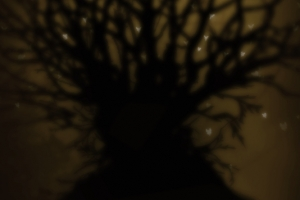 tree_tshirt